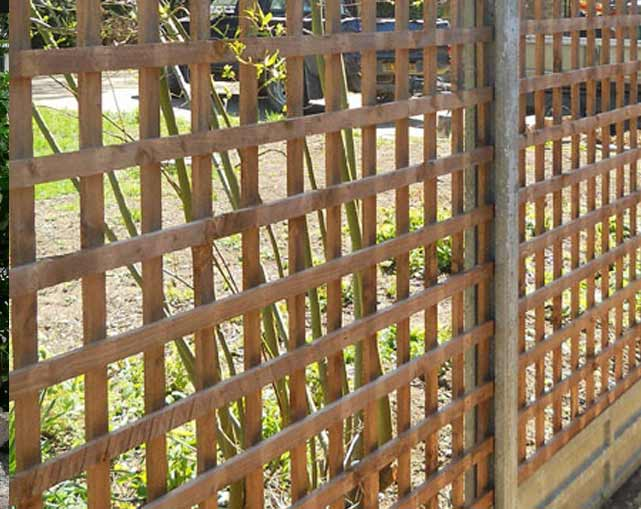 Trellis Fencing Stoke