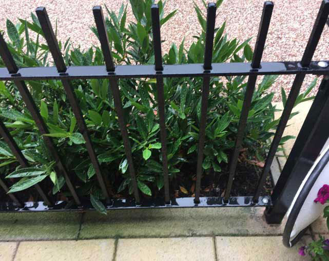 Metal Rail Fencing Stafford
